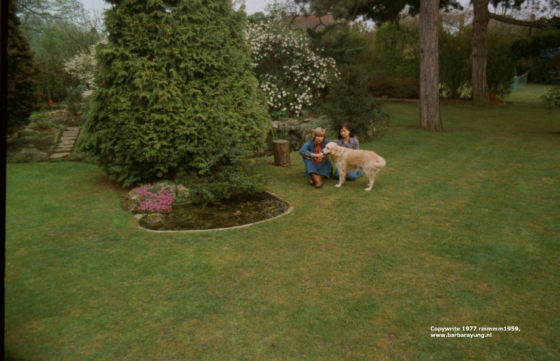 1977 my parents backgarden with dog